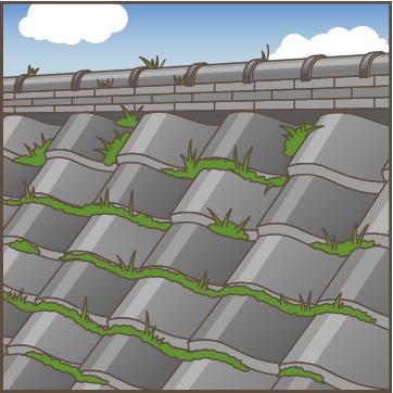 草やコケが生えている